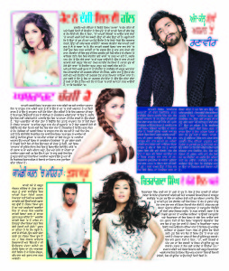 26 Dec Punjabi page copy