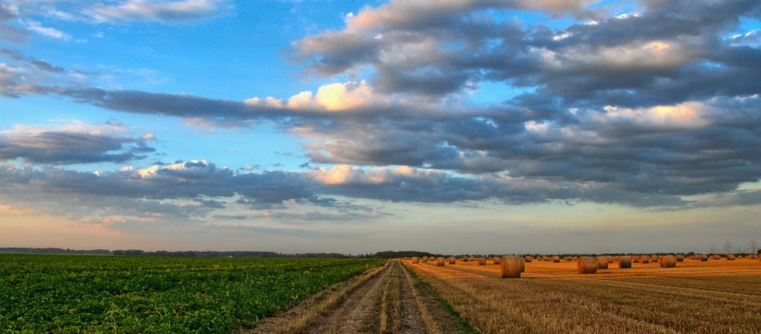 Ag Refresh: Comments by Councillor Sandy Blue